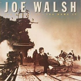 joe-walsh-you-bought
