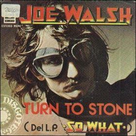 joe walsh turn to stone